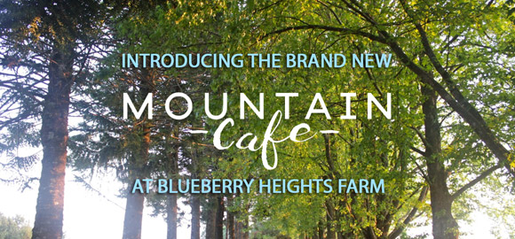 Brand New Mountain Cafe Open